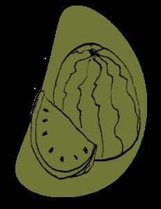 offre pastèque