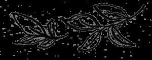 Identité visuelle papier ananas