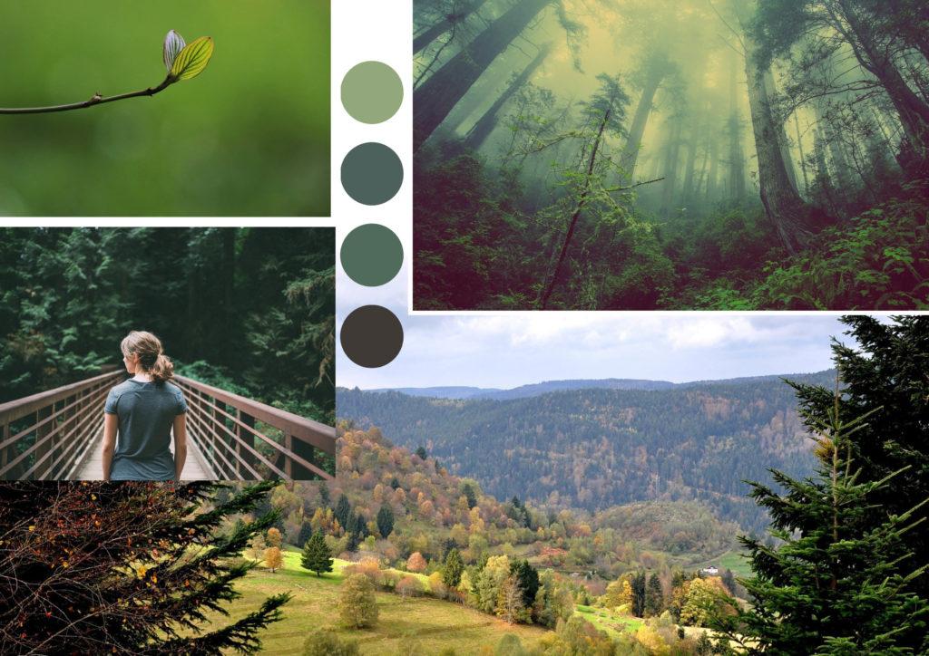 Moodboard nature